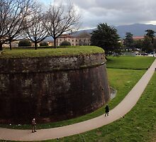 The Wall Of Lucca by STCroiss