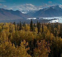 Panoramic ~ Matanuska Glacier (surrounded by the colors of fall) by akaurora