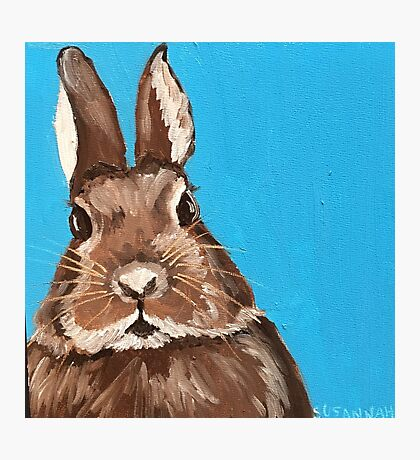 Funny Bunny On Blue Photographic Print