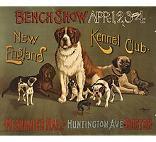 'Kennel Club' Vintage Poster Photographic Print