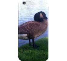 Outarde iPhone Case/Skin