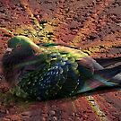 Rainbow Pigeon by BlueMoonRose