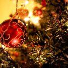 Christmas by Paul Rees-Jones