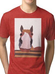 Leo the Horsie Tri-blend T-Shirt