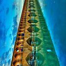 Si-o-Seh Pol (Bridge) - Isfahan - Iran - Daylight - Phone Cover by Bryan Freeman