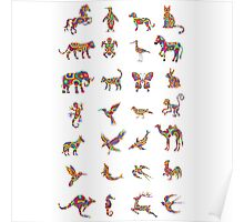 Animal colorfully collection Poster