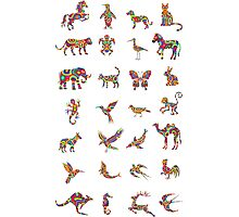 Animal colorfully collection Photographic Print