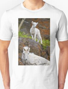STOCK ~ Mom ... What are they? Unisex T-Shirt