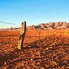 Outback Fence (GO6) by Ray Warren