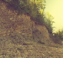 Rock hill with mud and plant by juras