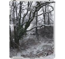 Into the Snowy Woods iPad Case/Skin