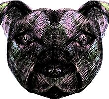 Starry Eye Staffy by amanda metalcat dodds
