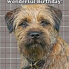 Border terrier birthday greeting card by Moonlake
