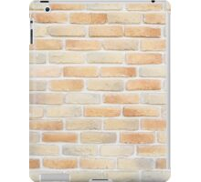 Brick wall pattern iPad Case/Skin