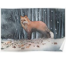 Red Fox in a Snowstorm Poster