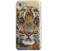 Thai baby tiger cub iPhone Case/Skin