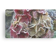 Frosted Pastels Canvas Print