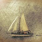In Full Sail by Lynn Bolt