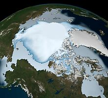 Planet Earth showing sea ice coverage in 1980. by StocktrekImages
