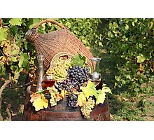 vineyard with grape and wine  Photographic Print