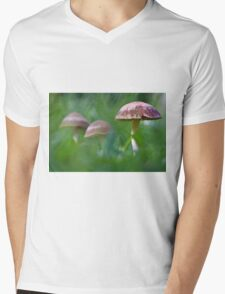 Where the fairies roam..! Mens V-Neck T-Shirt