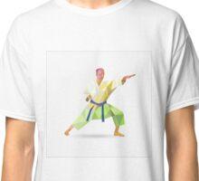 Karate, kong fu Classic T-Shirt