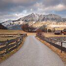 Bavarian Alps Path - 1/4 by Luka Skracic