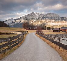 Bavarian Alps Path - 1/4 by Luka Skracic