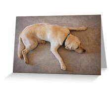 Tired Pooch Greeting Card