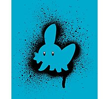Mudkip Graffiti Photographic Print