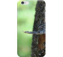 Nature XII iPhone Case/Skin