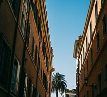 To The Piazza Di Spagna by PatiDesigns