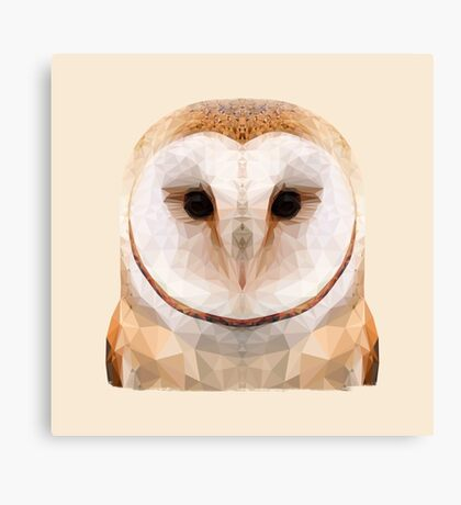 The Owl Canvas Print