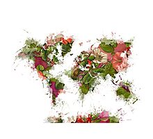 World Map 2049 Photographic Print