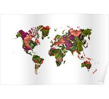 World Map 2059 Poster