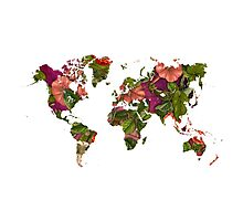 World Map 2059 Photographic Print
