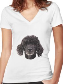cute little poodle Women's Fitted V-Neck T-Shirt
