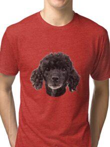 cute little poodle Tri-blend T-Shirt