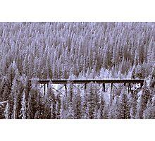 Glacier National Park 3 Photographic Print