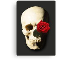 Skull with Rose in Eye Canvas Print