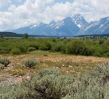Grand Tetons from Willows Flat by BelindaGreb