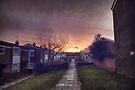Sunrise in Harlow by Nigel Bangert