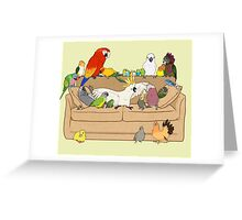 Birblr and Chill Greeting Card