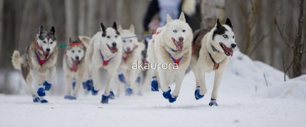 #2 Ceremonial Iditarod Start ~ The Athletes  by akaurora