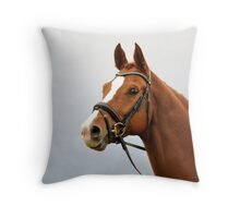 Looking horse Throw Pillow