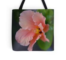 Peach Explosion Tote Bag