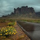 Road to the Superstitions by Sue  Cullumber