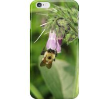 Bumblebee on Comfrey Flower iPhone Case/Skin
