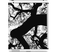 diptych fractal one iPad Case/Skin