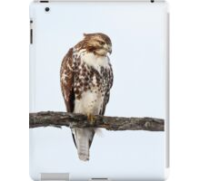 Red-tailed Hawk - Perched iPad Case/Skin